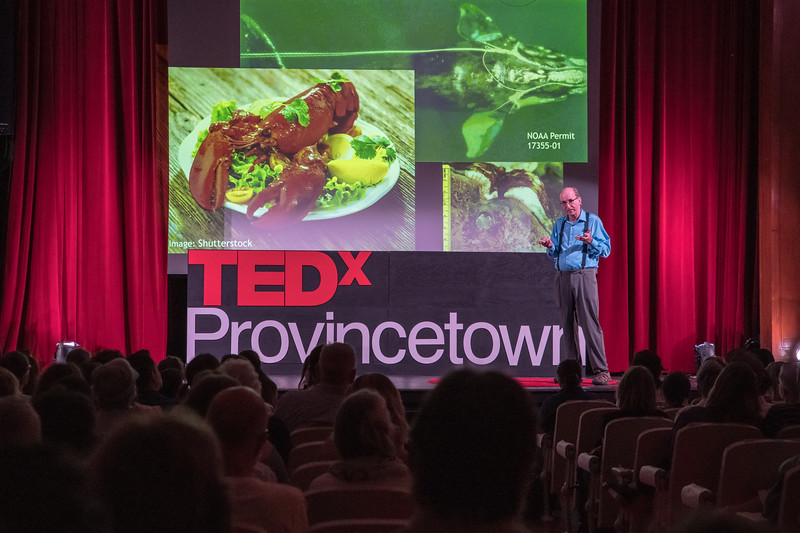 TEDx PTown Performancel Day-112.jpg