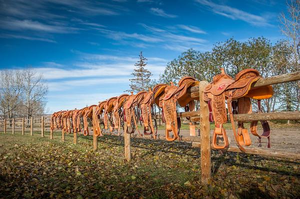 Woody's Custom Saddles