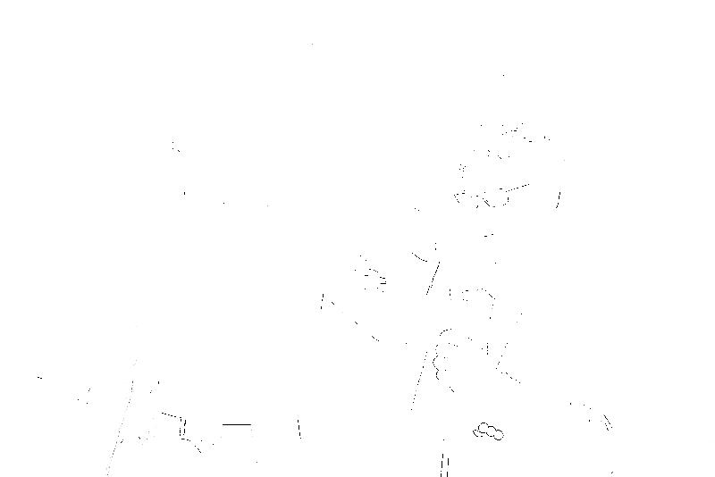DSC05728.png