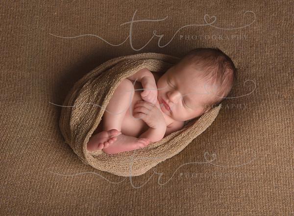 Tristan~5 Days New