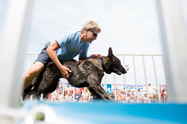 Ultimate Air Dogs - July 6, 2017