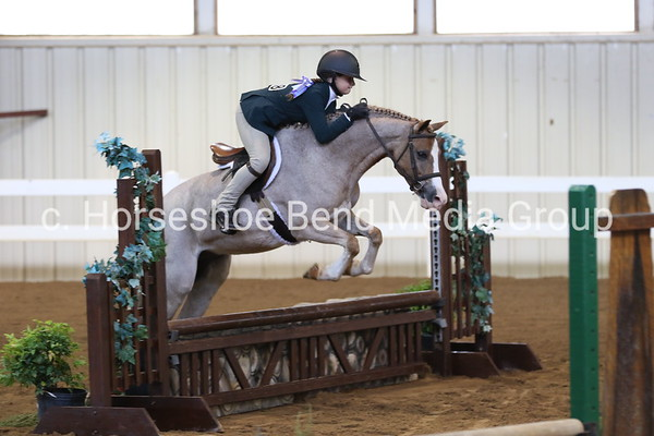 Lexington National Horse Show - Saturday - East Complex