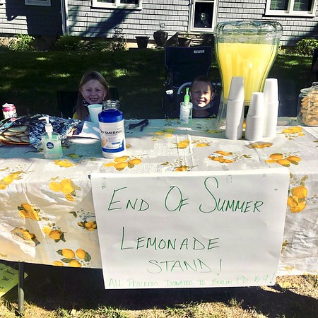 End of Summer Lemonade Stand