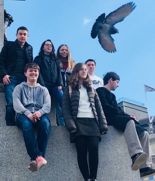 Trafalgar Pigeons.JPG