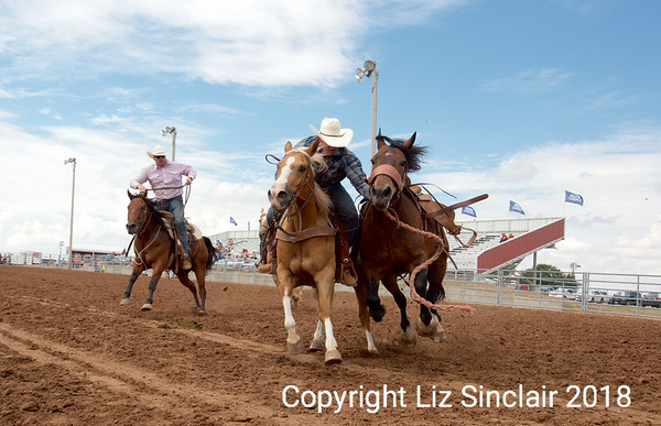 Oliver's  Ranch Rodeo and 3n1 Ranch Rodeo