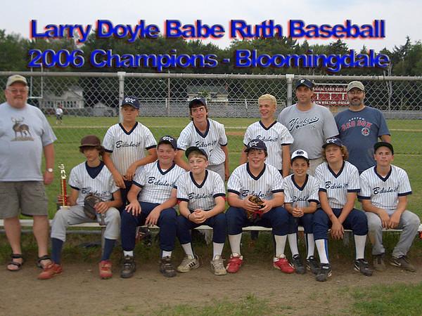 Baseball 2006 (Bloomingdale Babe Ruth)