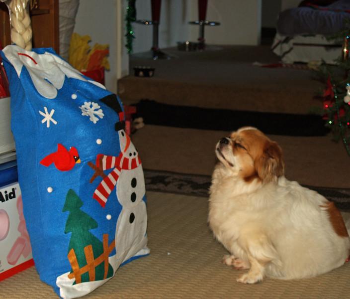 Christmas at Home 2007 155.jpg