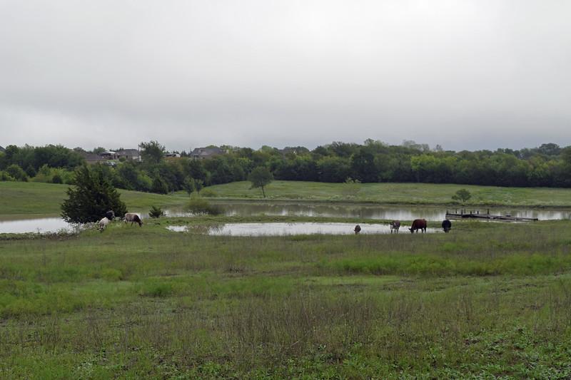 2018 Dove Hill Ranch (87).JPG