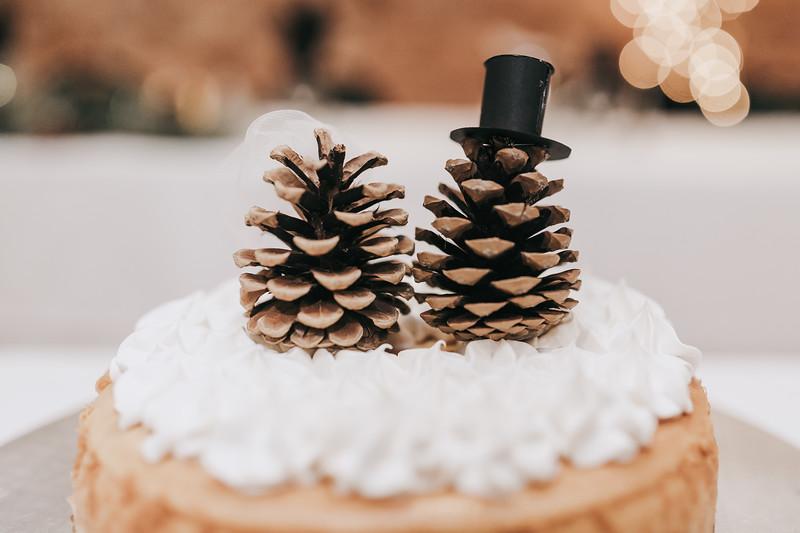 Johnna_Derek_Wedding_La_Casa_Grande_Beloit_Wisconsin_December_15_2018-315.jpg