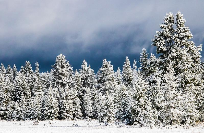 September Snowfall.jpg