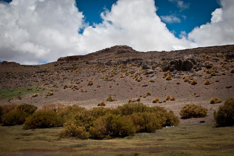 Atacama 201202 Salar de Tara (202).jpg