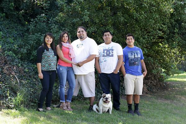 Garibay family