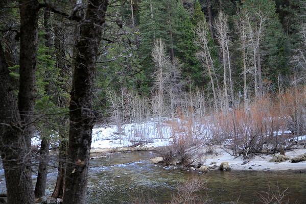 Yosemite February 2013