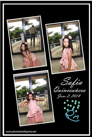 Sofia's Quinceanera