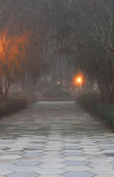 Brunswick Area in Morning Fog 02-04-08
