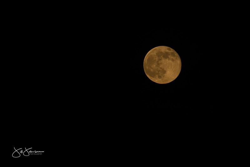 moon-9282.jpg