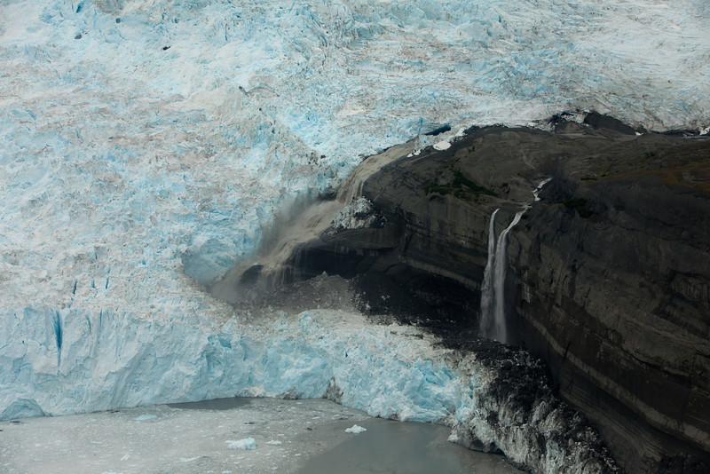 Alaska Icy Bay-3861.jpg