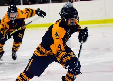 HS Sports - Wyandotte Roosevelt at Allen Park Hockey 19