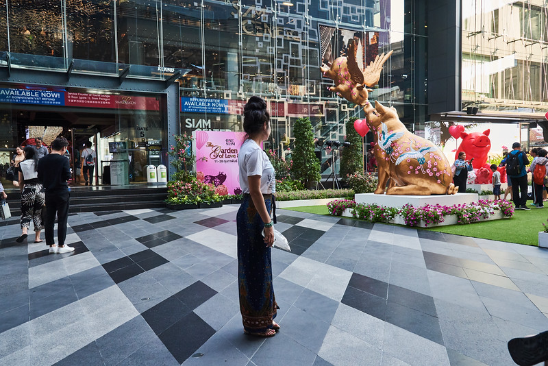 Trip to Bangkok Thailand (372).jpg