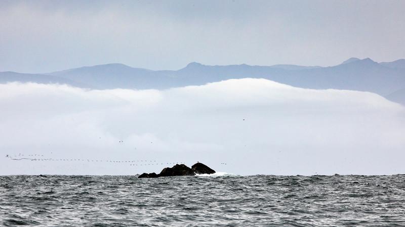 Chilean National Humbolt Penguin Reserve Isla Choros -  Seascape #2