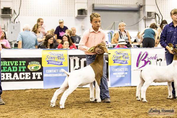 4-H Market Goats