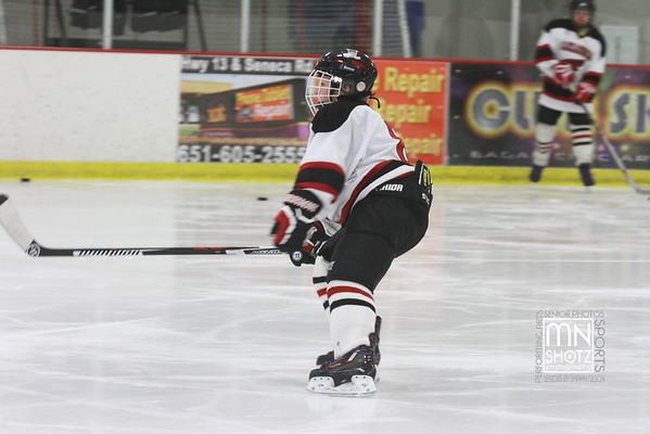Alexandria Hockey