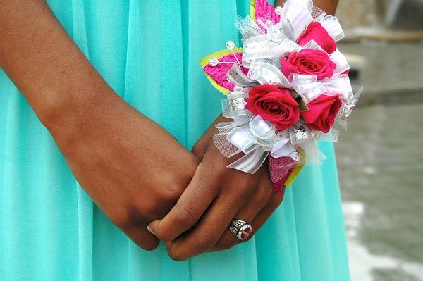 2015 Manual Junior Prom