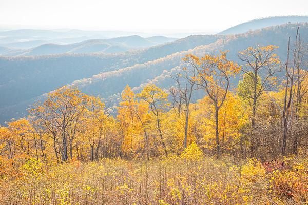 Shenandoah National Park (2019-11)