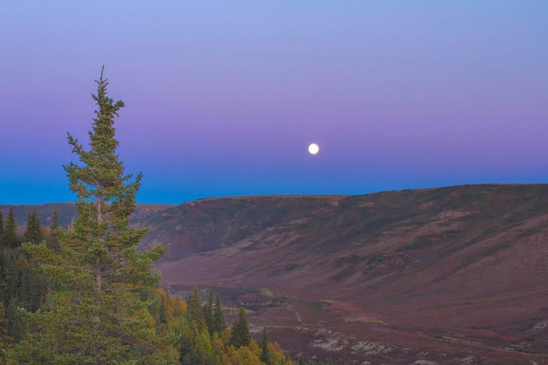 View of moon at Camp Denali