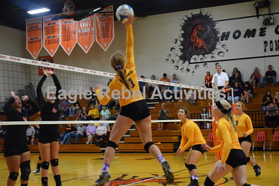 Volleyball Game Shots