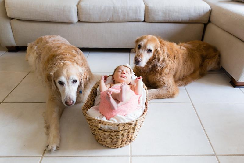 Mila Newborn-161.jpg