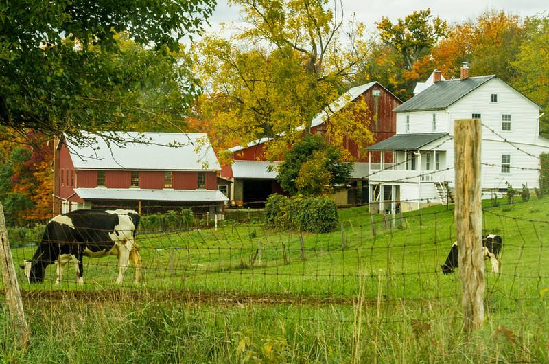 20121007_OhioFall_IMG_4803.jpg