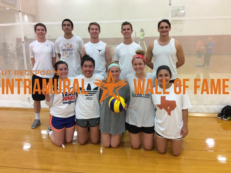 Fall 2016 Volleyball Coed C Runner Up_Texas Berzerkers