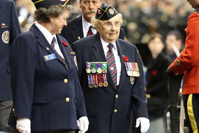 2014 Remembrance Day