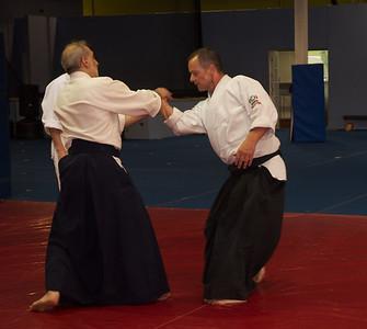 Aikido 2011