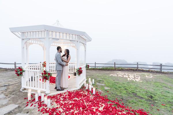 Amrit + Harjeet Proposal