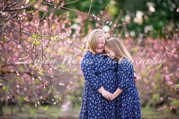 Peach blossoms - Hawkins