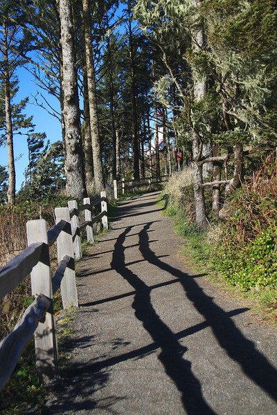 You can see the lighthouse peeking rough the trees. I love these fence shadows leading the way up the trail.jpg