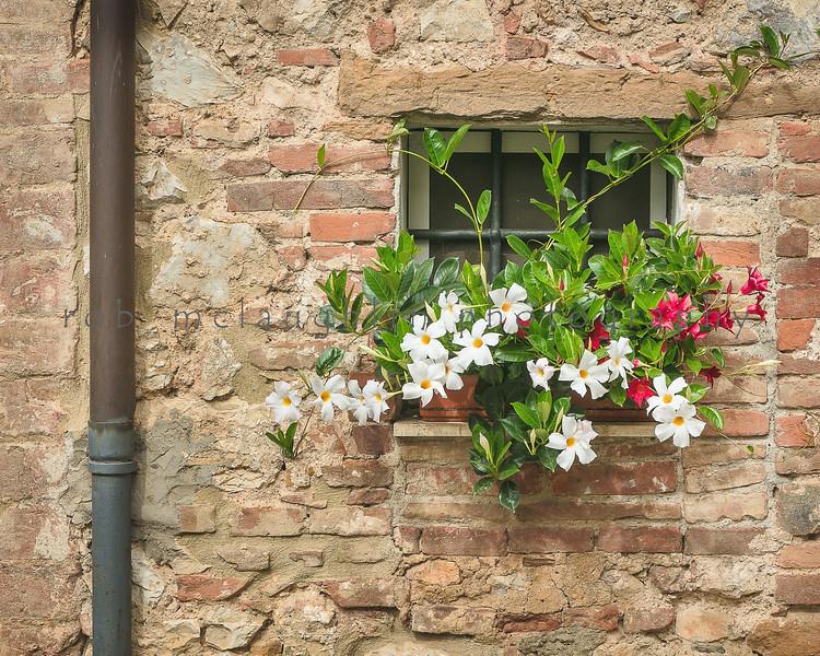 Blooms and Bricks , Trequanda , Tuscany