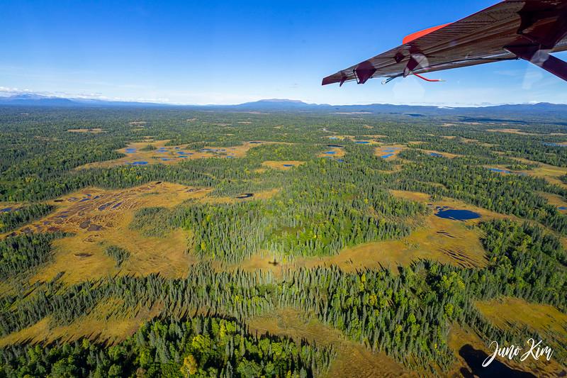Rust's_Beluga Lake__DSC8784-2-Juno Kim.jpg