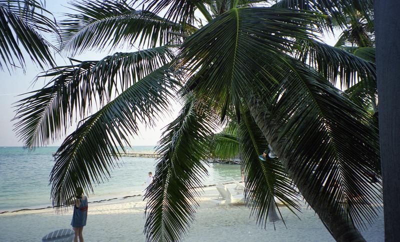 Belize 03-2003-039.jpg