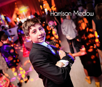 Harrison Medow Album Preview