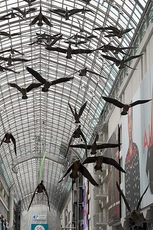Birds in flight, Eaton Center, Toronto, Ontario