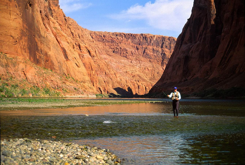 Sight casting to trout in Glen Canyon.jpg