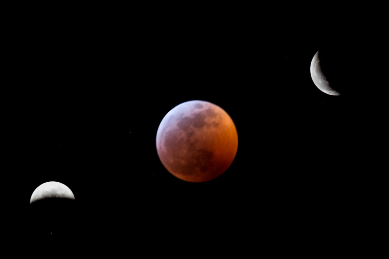 January 20 - Super Blood Wolf Moon.jpg