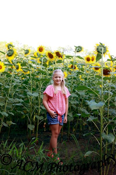 The Martin Family - Sunflower Field