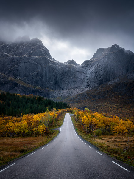 Autumn colors road Lofoten moody landscape photography fall mountain trees.jpg