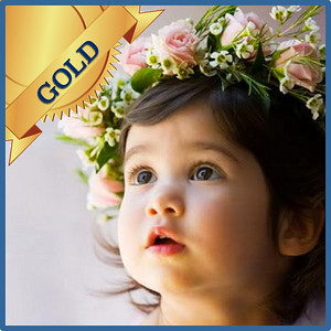 92504 Bridesmaid or kids hair decoration Gold