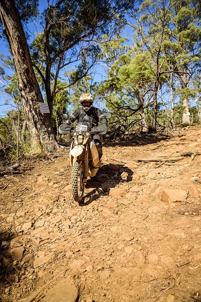 2019 KTM Australia Adventure Rallye (548).jpg