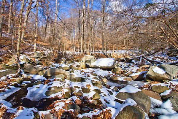 Patapsco Park Snow Photos - 14 Jan 10